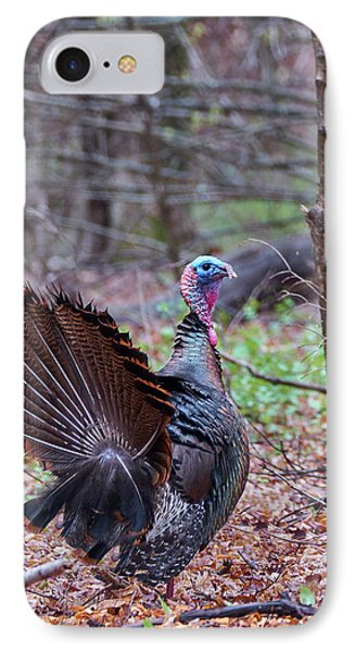 IPhone 7 Case featuring the photograph Spring Gobbler by Bill Wakeley