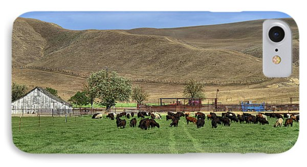 IPhone Case featuring the photograph Spring Grazing by Donna Kennedy