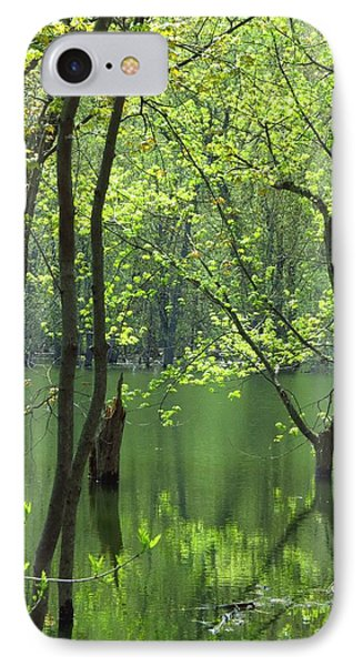Spring Green  Phone Case by Lori Frisch