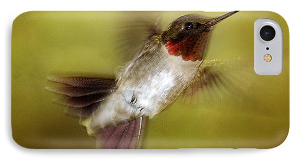 Spring Hummingbird IPhone Case by TnBackroadsPhotos