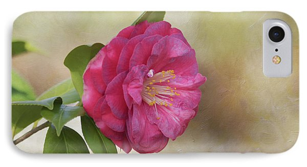 IPhone Case featuring the photograph Spring In Savannah by Kim Hojnacki