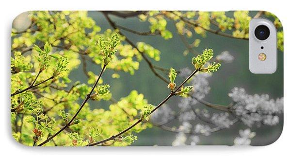 Spring In The Arboretum IPhone Case by Joni Eskridge