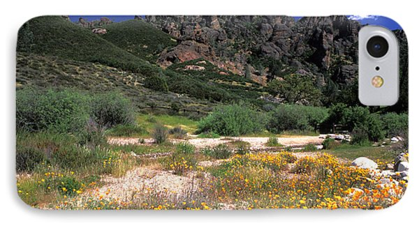 Spring In The Pinnacles Phone Case by Kathy Yates
