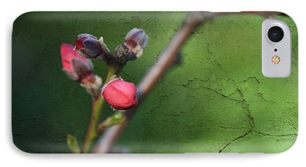 Spring Is Coming  IPhone Case by Claudia Ellis
