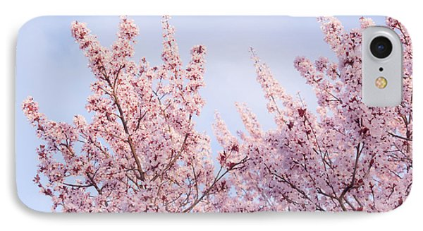 IPhone Case featuring the photograph Spring Is In The Air by Ana V Ramirez