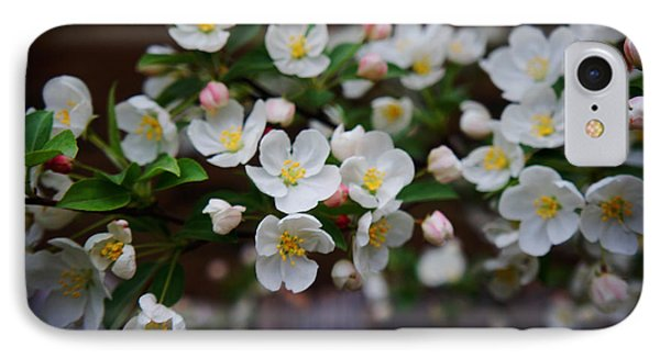 Spring Lanscape  IPhone Case