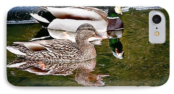 Spring Mallard Print IPhone Case by Gwen Gibson