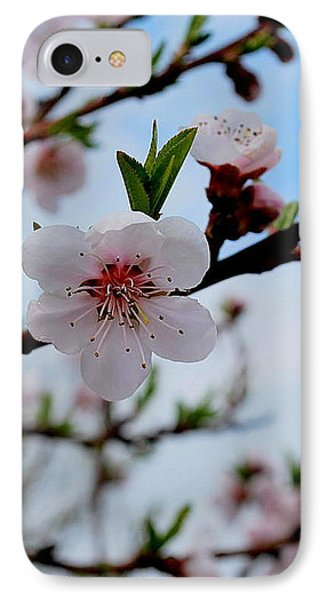 IPhone Case featuring the photograph Spring by Marija Djedovic