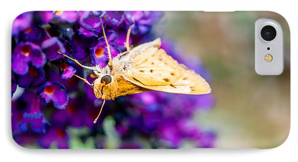 Spring Moth IPhone Case