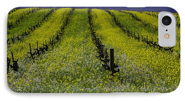 Spring Mustard Field IPhone Case by Garry Gay