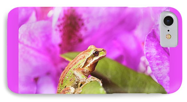 Spring Peeper Frog Inside Of Wild Flowers During Bright Daylight IPhone Case by Thomas Baker