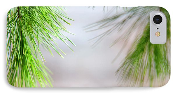 IPhone Case featuring the photograph Spring Pine Abstract by Christina Rollo