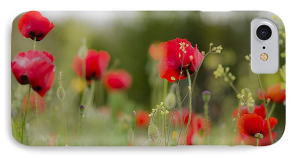 Spring Poppies  IPhone Case by Perry Van Munster