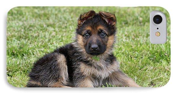 Spring Puppy Phone Case by Sandy Keeton