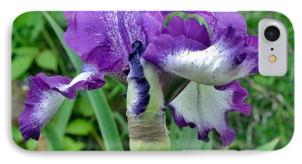 Spring Purple Iris IPhone Case by Marsha Heiken