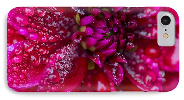 Spring - Rain And Flower IPhone Case by Patrick Downey