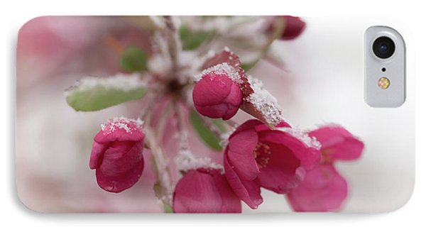 IPhone Case featuring the photograph Spring Snow by Ana V Ramirez