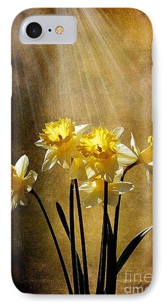 Spring Sun Phone Case by Lois Bryan