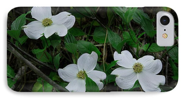 IPhone Case featuring the photograph Spring Time Dogwood by Mike Eingle