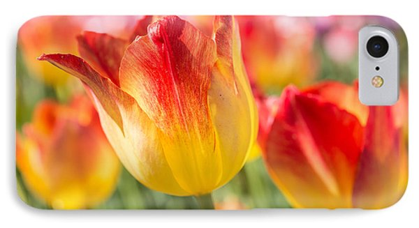 IPhone Case featuring the photograph Spring Touches My Soul by Julie Andel