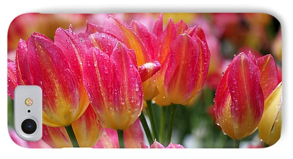 IPhone Case featuring the photograph Spring Tulips In The Rain by Rona Black