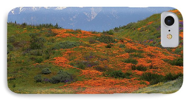 IPhone Case featuring the photograph Spring Wildflower Display At Diamond Lake In California by Jetson Nguyen
