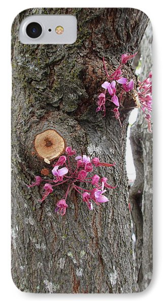 Spring Will Not Be Denied IPhone Case by Marie Neder