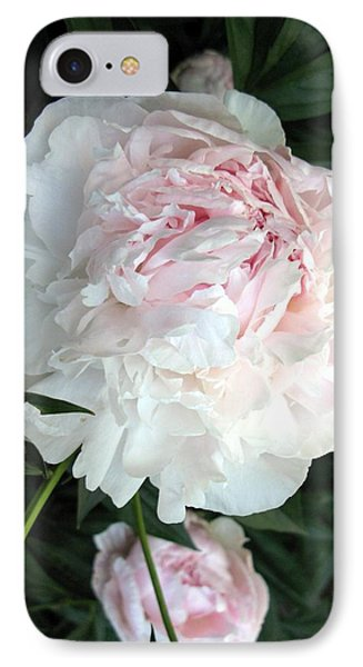 IPhone Case featuring the photograph Springs Peony by Carol Sweetwood