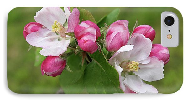 IPhone Case featuring the photograph Springtime Apple Blossom by Gill Billington
