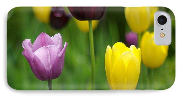 Springtime Glory IPhone Case by Linda Mishler