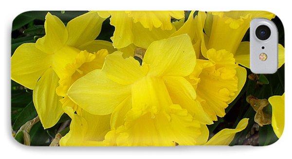 Springtime In Ireland Phone Case by Patrick J Murphy