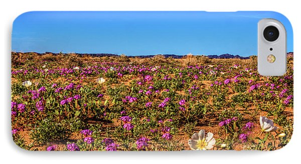 IPhone Case featuring the photograph Springtime In The Sonoran Desert by Robert Bales