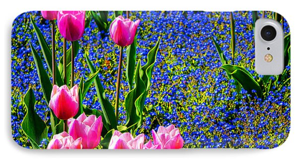 Springtime Tulips IPhone Case by Olivier Le Queinec