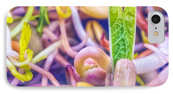 IPhone Case featuring the photograph Sprouts Are Magic by TC Morgan