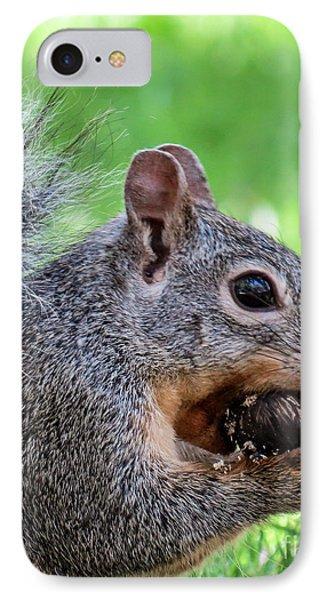 Squirrel 1 IPhone Case