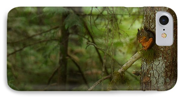 IPhone Case featuring the photograph Squirrel Breaks The Silence by Lisa Knechtel