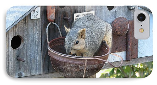 Squirrel Feeding IPhone Case