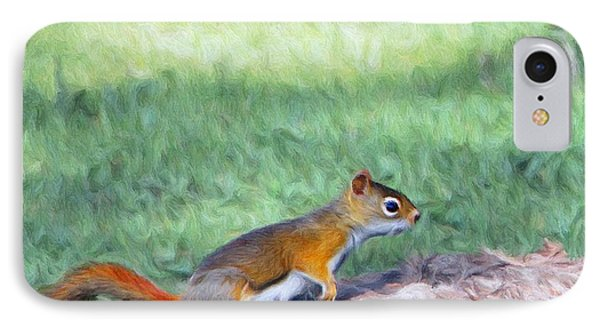 Squirrel In The Park IPhone Case by Jeff Kolker