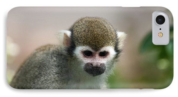 Squirrel Monkey IPhone Case by Amanda Elwell
