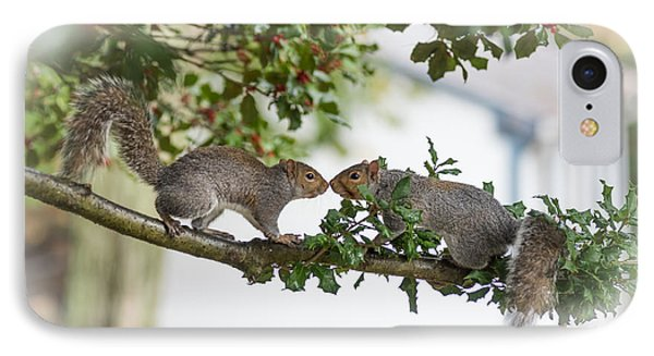 Squirrels Nose To Nose IPhone Case