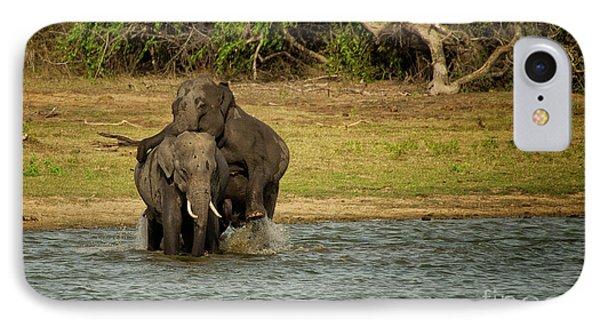 Sri Lankan Elephants  IPhone Case