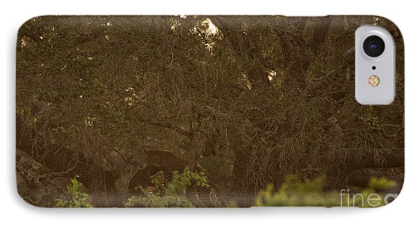 Sri Lankan Leopard And Wild Boar IPhone Case