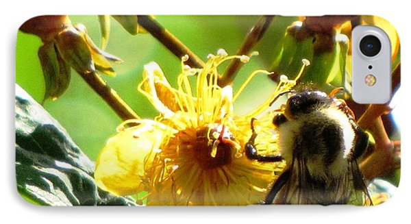 St. John's Wort IPhone Case