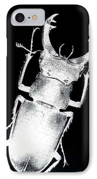 Stag Beetle Phone Case by Gabriela Insuratelu