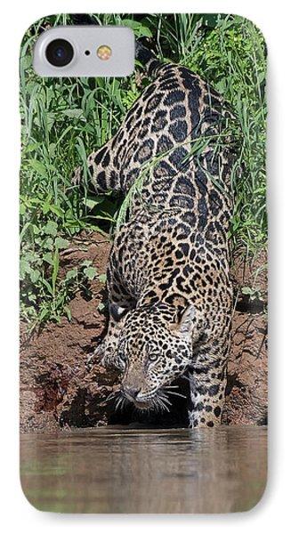 Stalking Jaguar IPhone Case by Wade Aiken