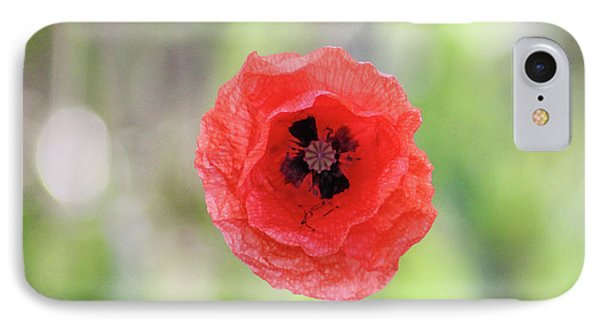 Stand Alone Poppy IPhone Case by Martin Newman