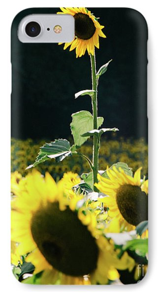 IPhone Case featuring the photograph Stand Out 2 by Andrea Anderegg