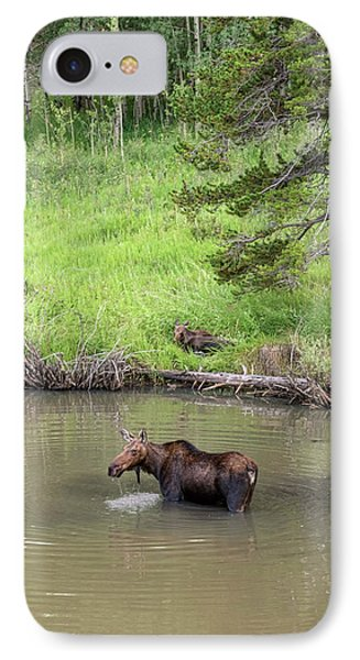 IPhone Case featuring the photograph Standing Guard by James BO Insogna
