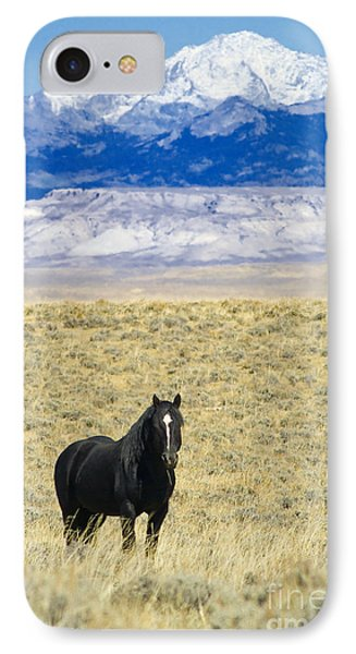 Standing Horse IPhone Case