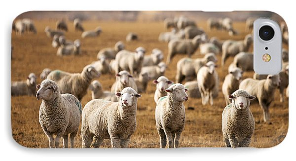 Standing Out In The Herd IPhone Case by Todd Klassy
